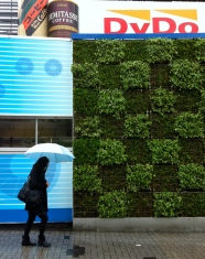 Even the Takadanobaba train station where I get off every morning has some walls planted in a green chessboard!