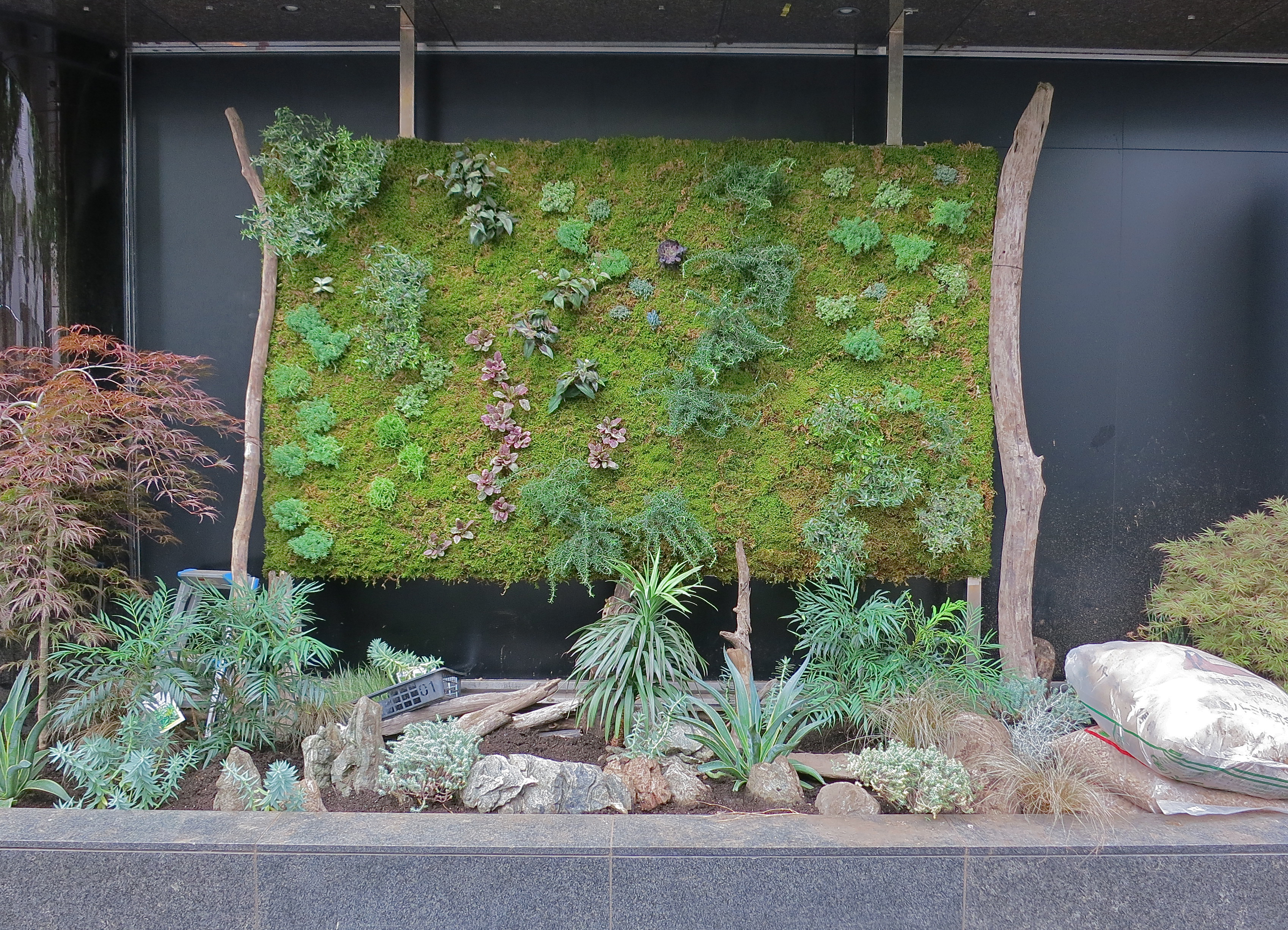 Vertical gardens jonelle patrick 39 s only in japan for Plants used in japanese gardens