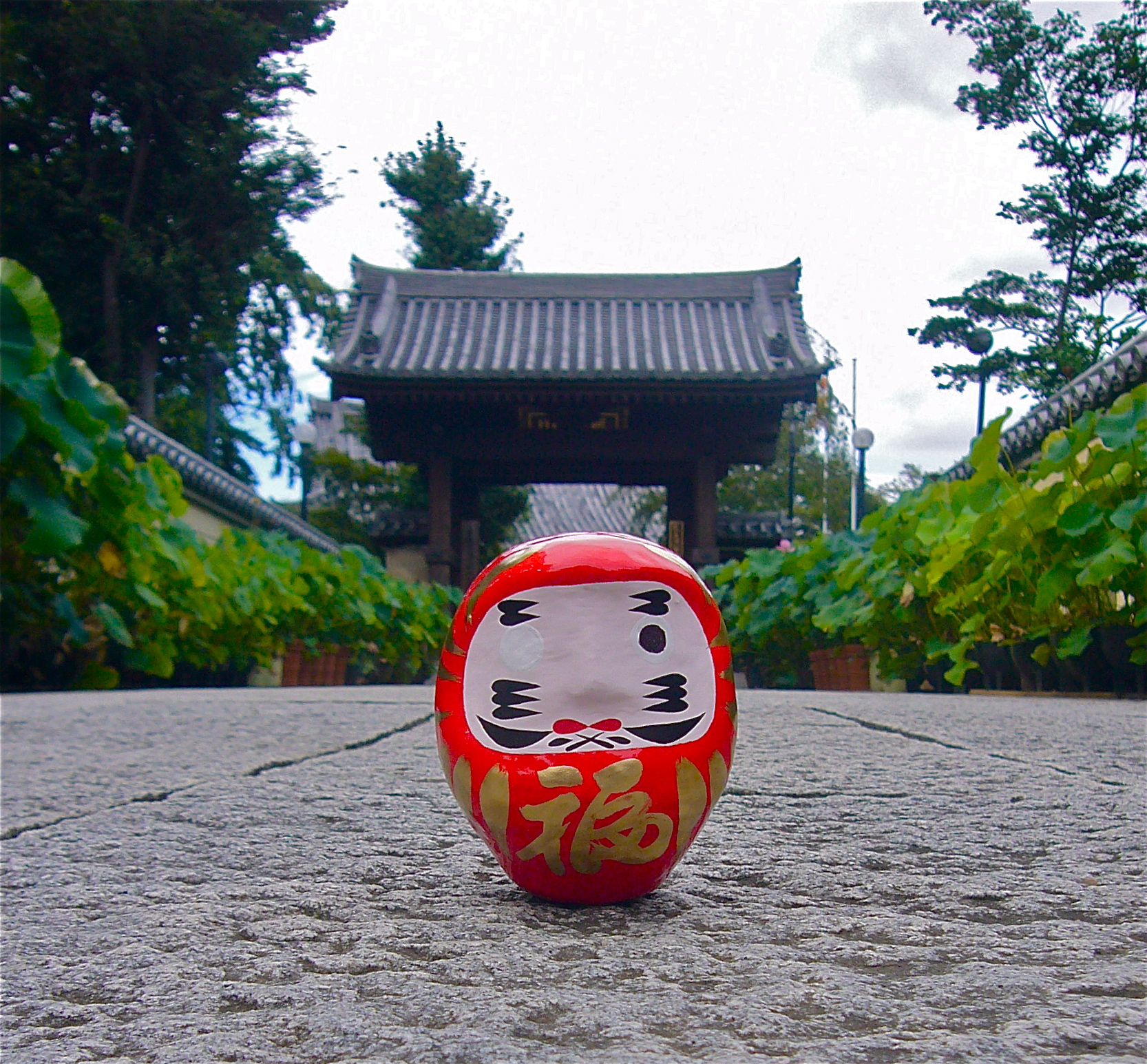 Daruma figure in front of temple gate