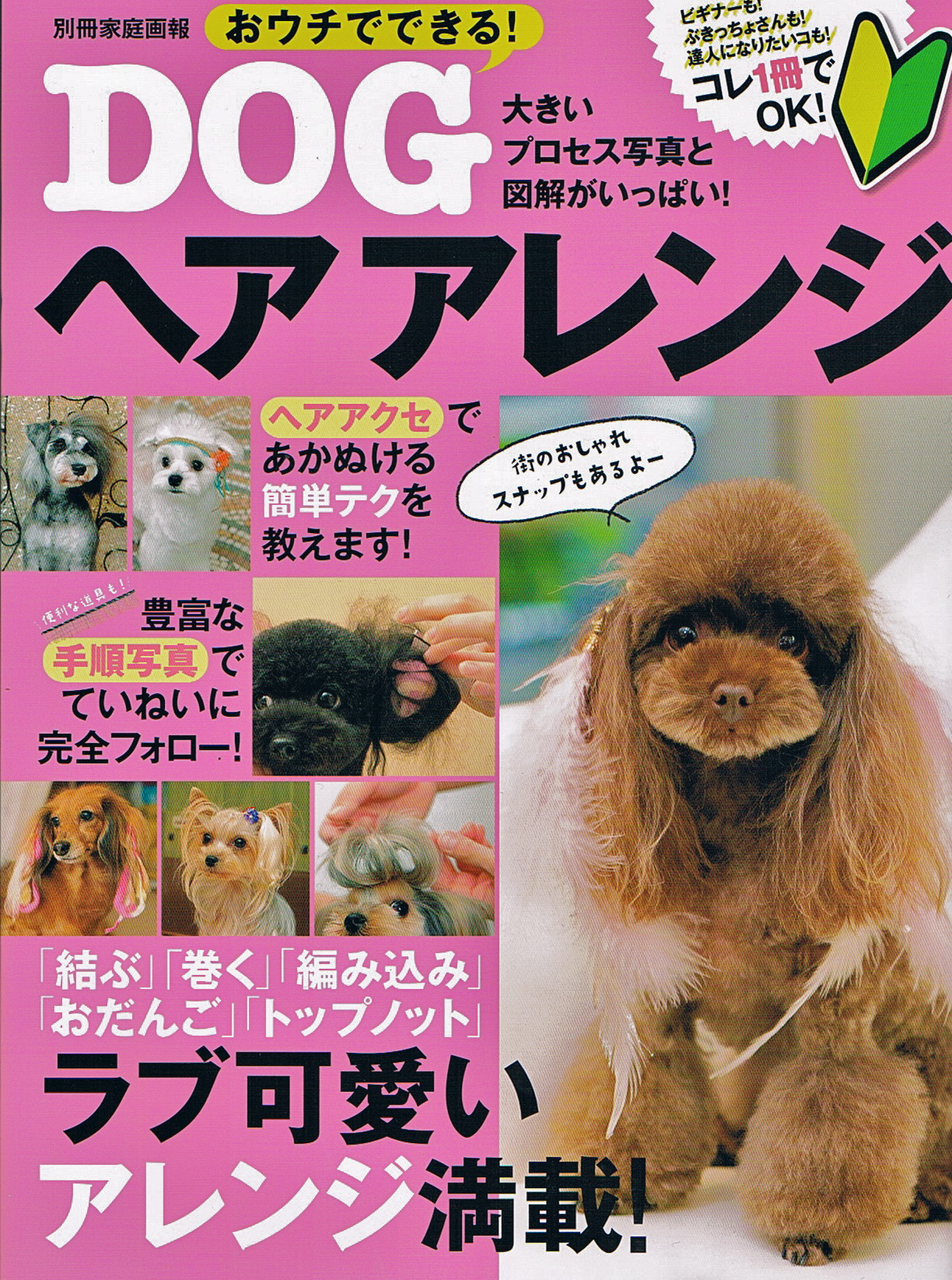 DogHairstyle