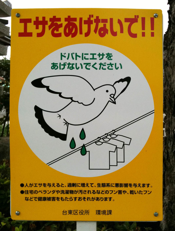 PigeonPoop