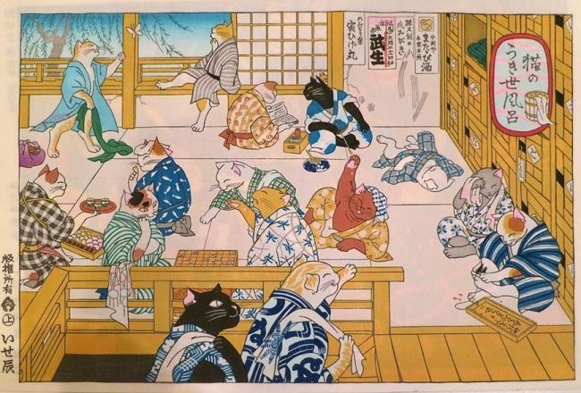 ChiyogamiCats