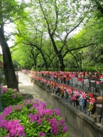 Anyone can stroll along this boulevard of Jizo figures at Zojoji Temple, near the fancy Tofu-ya Ukai restaurant.
