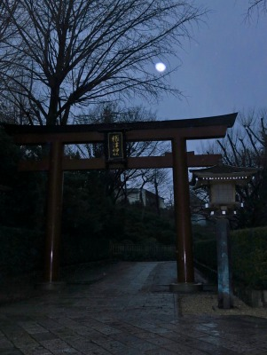 The giant torii gate at the entrance to the Nezu shrine becomes a spooky portal at night.