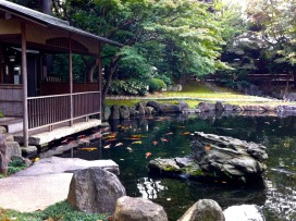This is the viewing pavilion, on the edge of the koi pond