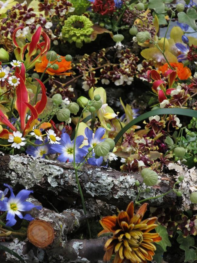 FlowerDream3