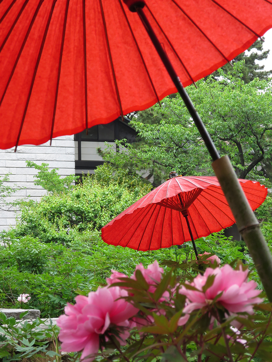 Blooming plants get their own parasols at Nishiaria Daishi Temple.