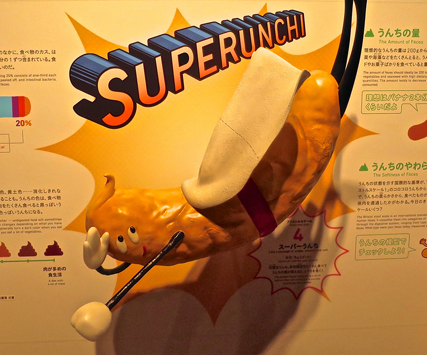 Super Pooman not only demonstrates the pinnacle of poo pulchiritude by being banana-like in color and shape, he imparts essential information about color, size and shape so you can analyze your own.