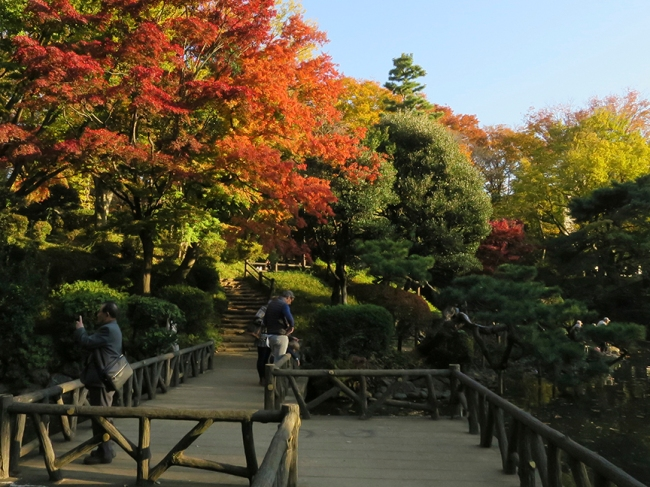 This hidden gem of a park is perfect for a stroll before heading out for a night in Nakameguro, Ebisu or Roppongi.