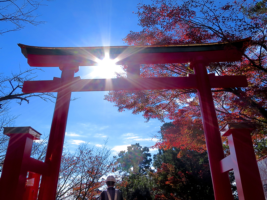 Climb the steps to the shrine all the way at the top for amazing views and leaves.