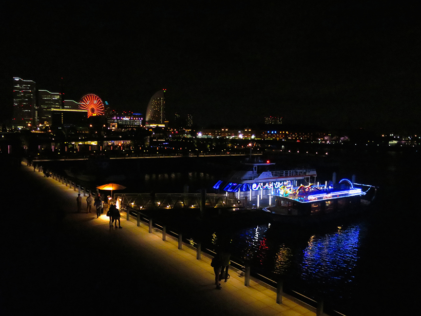 Even the sightseeing boats were bedizened with neon and fairy lights.