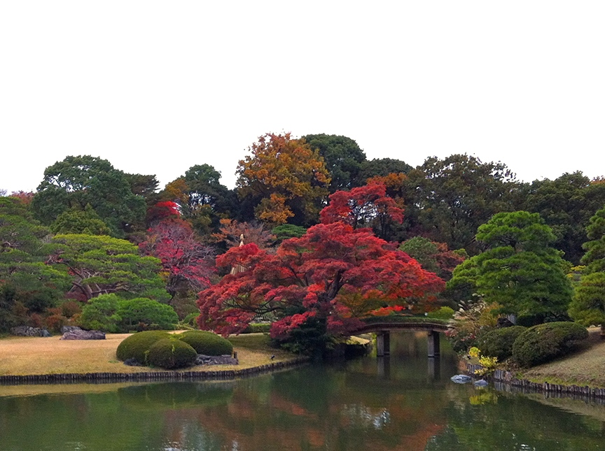 Rikugi-en never disappoints, with its 88 views from famous waka poems.