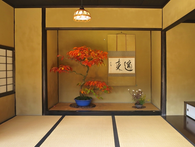 Bonus attraction: There is a really choice bonsai garden within the Japanese garden walls, and this open tea room displays the most spectacular specimen.