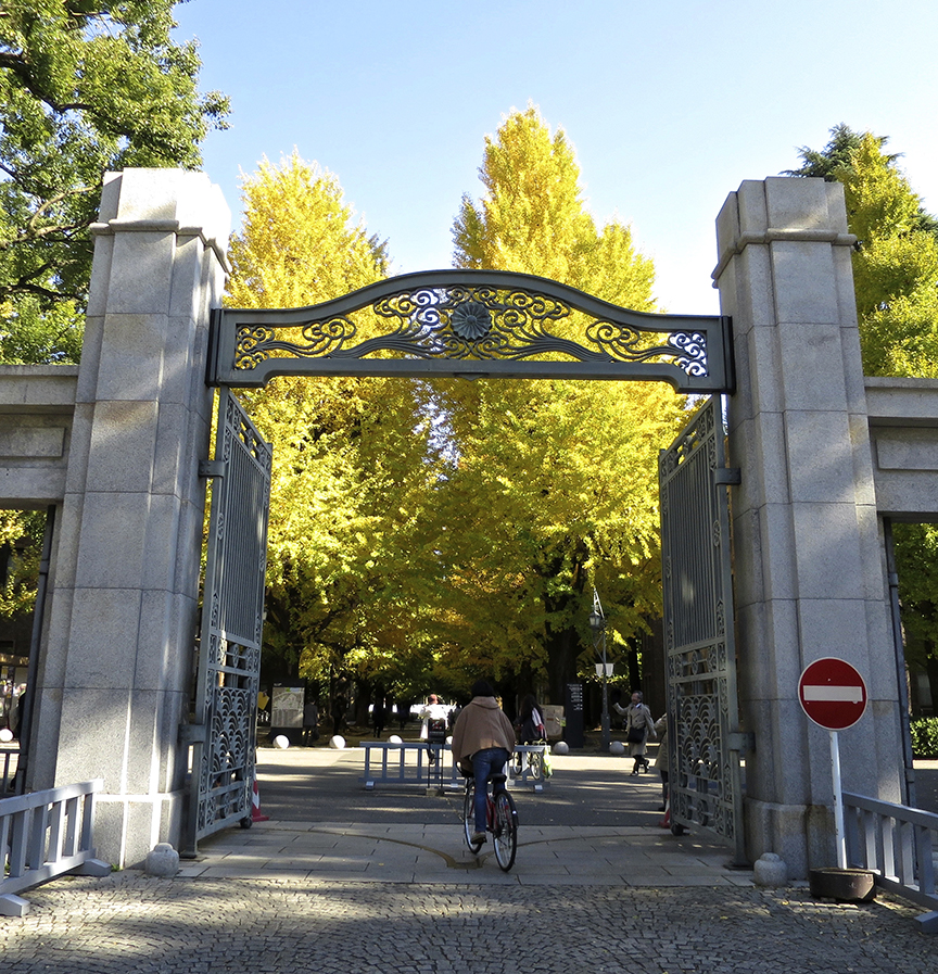Tokyo University's gothic buildings are the perfect backdrop for a lovely line-up of gingko trees. They reach their golden peak in late November, and there's never a crowd, so you can enjoy a peaceful walk under the canopy.