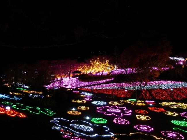 Lights, lights, as far as the eye can see! The whole mountainside was covered in lights!