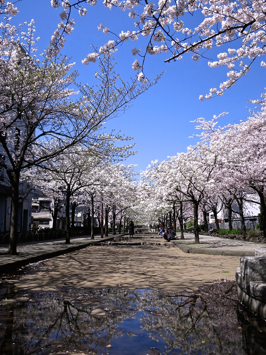 If you're really lucky, this lovely promenade will have water cascading down the center, but even when it's dry, it's a wonderful place to walk and eat your bento.