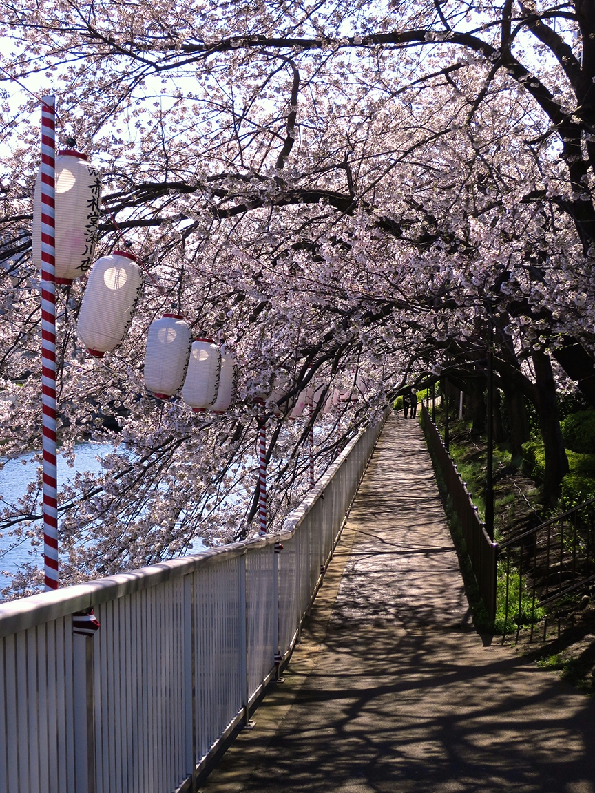 You can walk all along the water on this lovely (and deserted!) path, lined with paper lanterns.