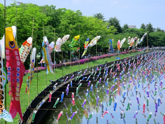Because these carp flags are flown in honor of Children's Day (formerly Boys' Day, in gender inequality eras of yore), the big fish flags alongside the river were decorated by local kindergarteners.
