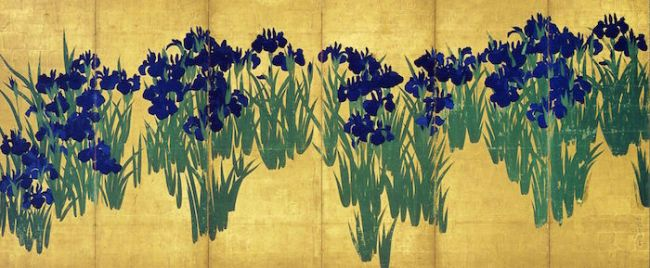 ...the annual exhibition of this screen, which is a National Cultural Treasure, painted by Korin. The iris on the screen and the iris in the garden are the same variety!