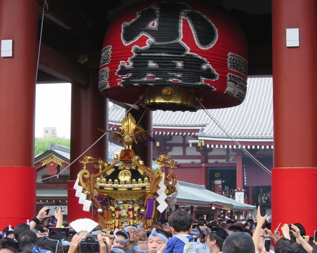 Each team takes a special route through Asakusa – being sure to linger in their own neighborhood to make sure the gods get a good look at the people and places that fall within their sphere of influence – but they all parade down the street in front of the grand Senso-ji Temple sometime during the afternoon.