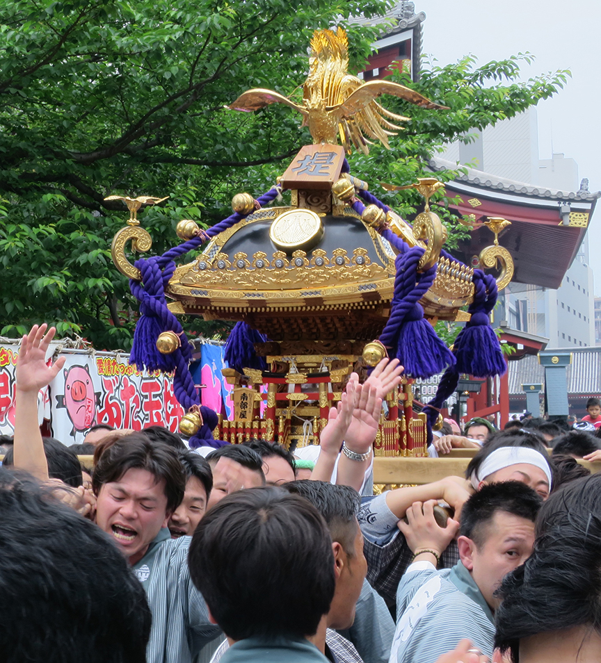 Each team represents a neighborhood, and it's a matter of honor to try and out-do the guys next door when it comes to loudness of chanting, vigorousness of shrine jostling, and overall festivity.