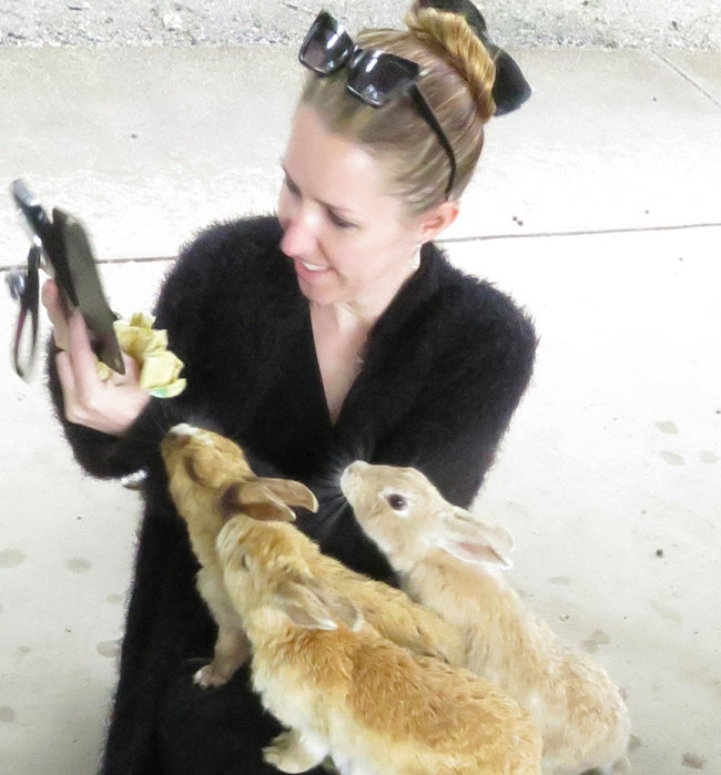 I know these bunnies are supposed to be wild, but they seem suspiciously adept at posing for selfies.