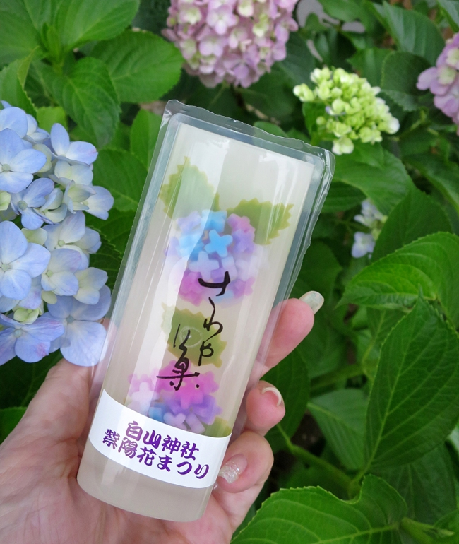 And of course they sell hydrangea-themed sweets! This is mizu-yokan, a sort of jellied bean paste that is popular in summertime.
