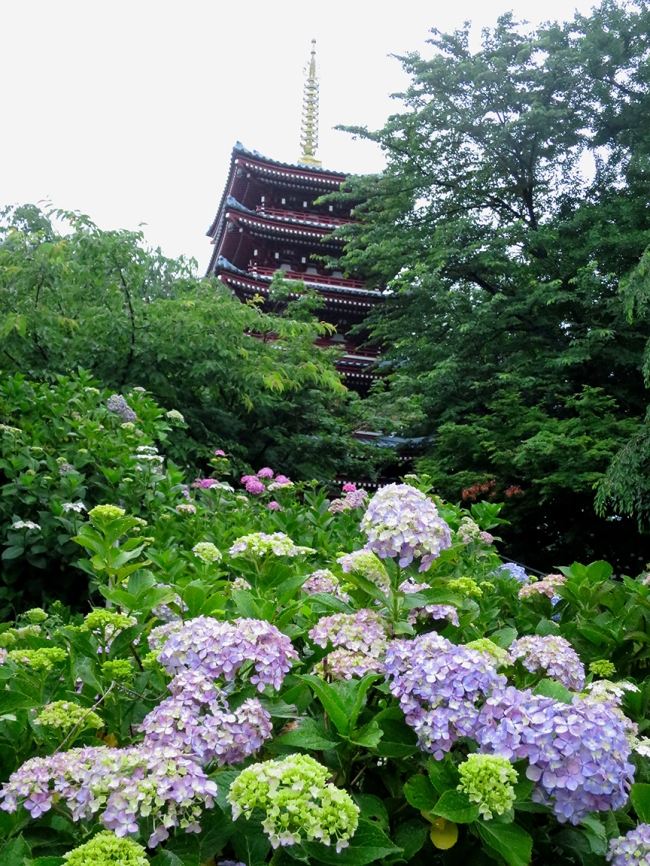 Plus: pagoda