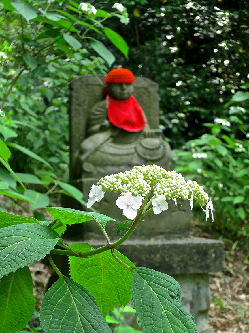 And in case you haven't gotten around to making that famous (and arduous) Shikoku temple pilgrimage, the paths on the hydrangea mountain are populated by Jizo figures from each of the 88 temples on the circuit. Shortcut to paradise? Sign me up!