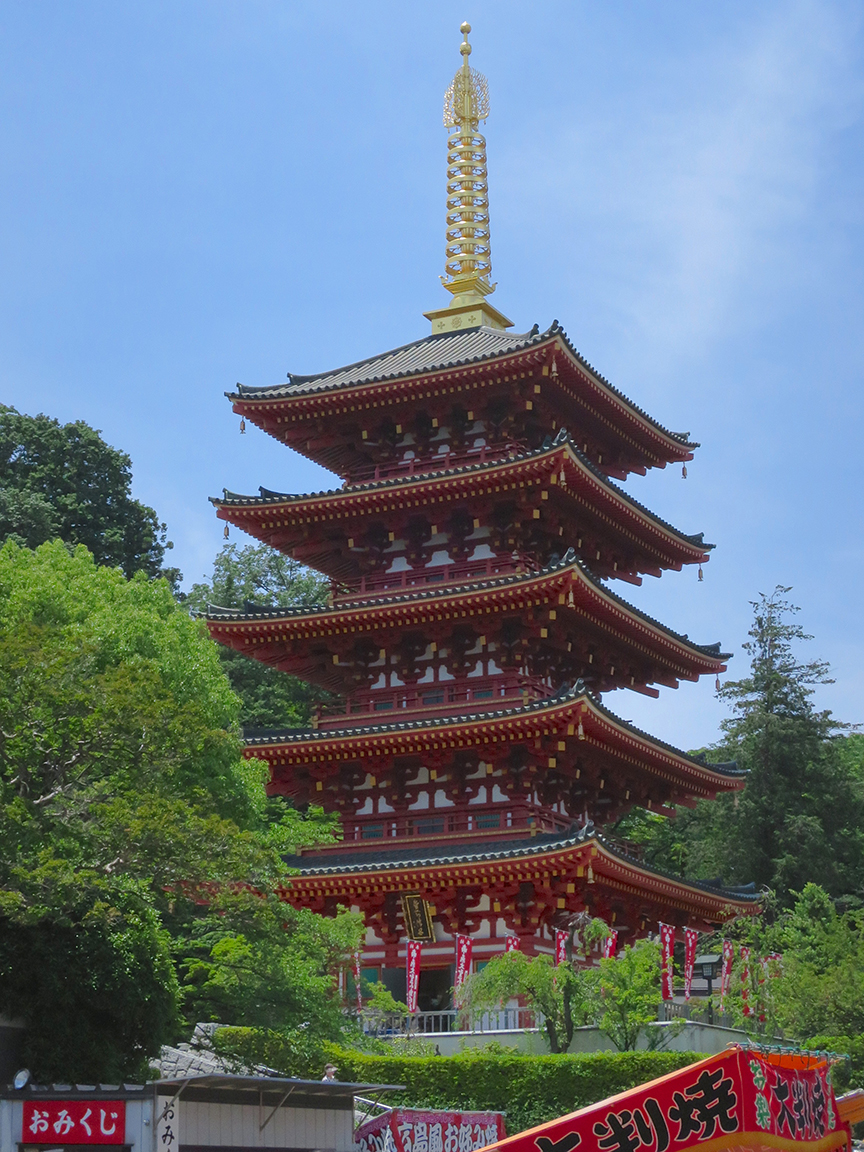 And of course, you get to see Takahata Fudo's gorgeous pagoda while you're there to see the flowers!