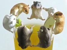 HamstersFeat