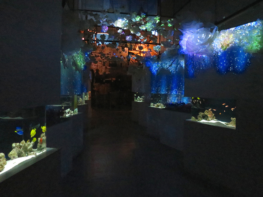 And this gallery is a lovely but slightly confusing mashup of fish/flowers/snow, but since Aqua Park is all about entertainment, we don't even care.