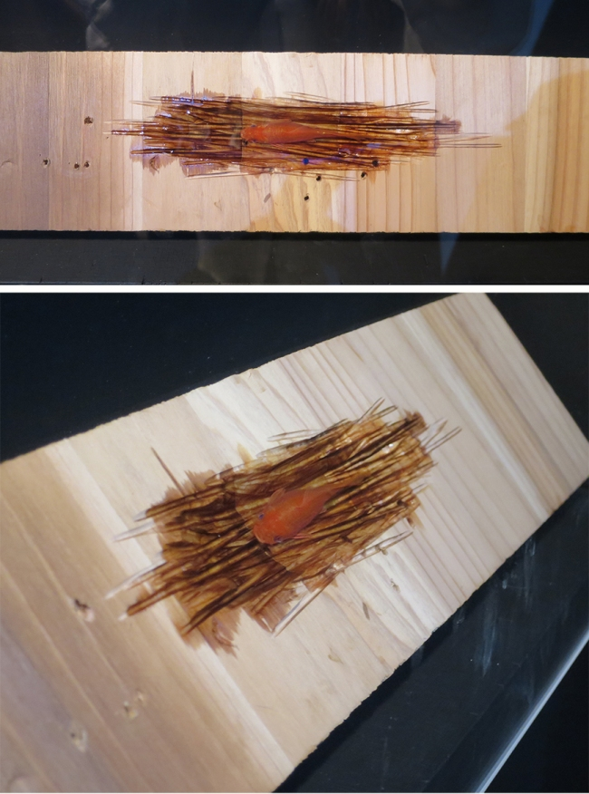 There was also this piece – a goldfish lurking in an artfully gouged-out plank