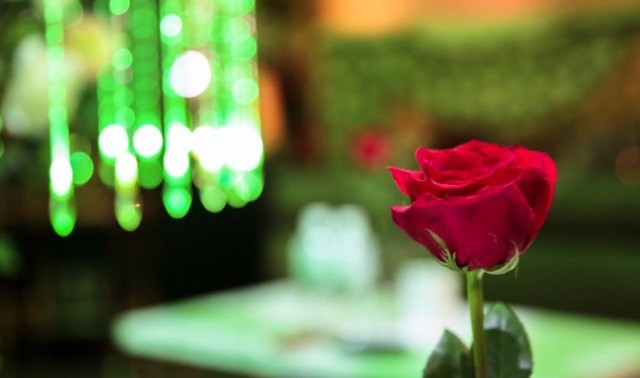 Rose at a Japanese host club