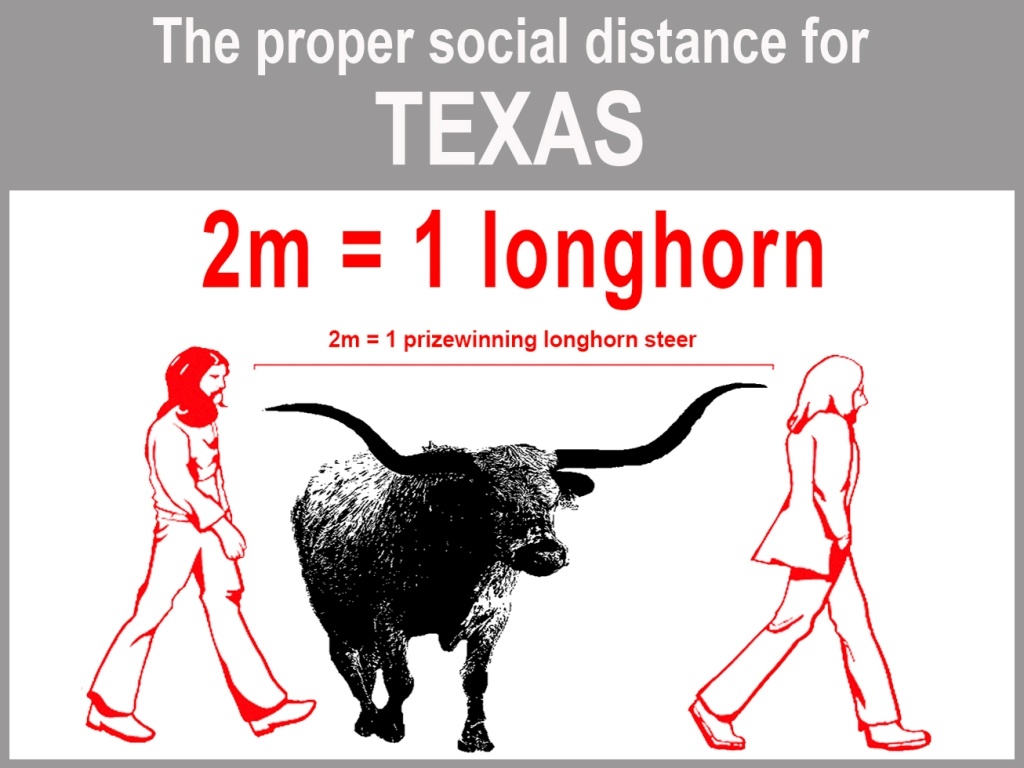 Graphic demonstrating how far away to stand from others during pandemic, using longhorn steer as measurement