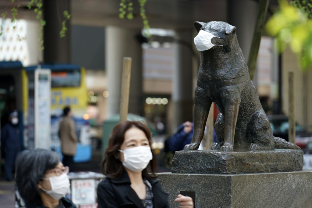 Photo of Hachiko statue at Shibuya Station wearing a face mask